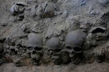 aztex-skulls-webs