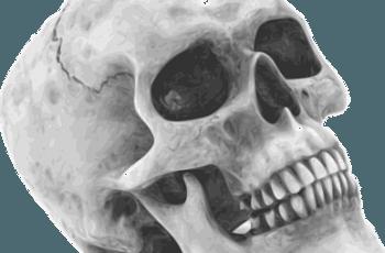 Alien skeletons found!